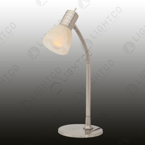 TABLE LAMP GOOSE NECK AND GLASS
